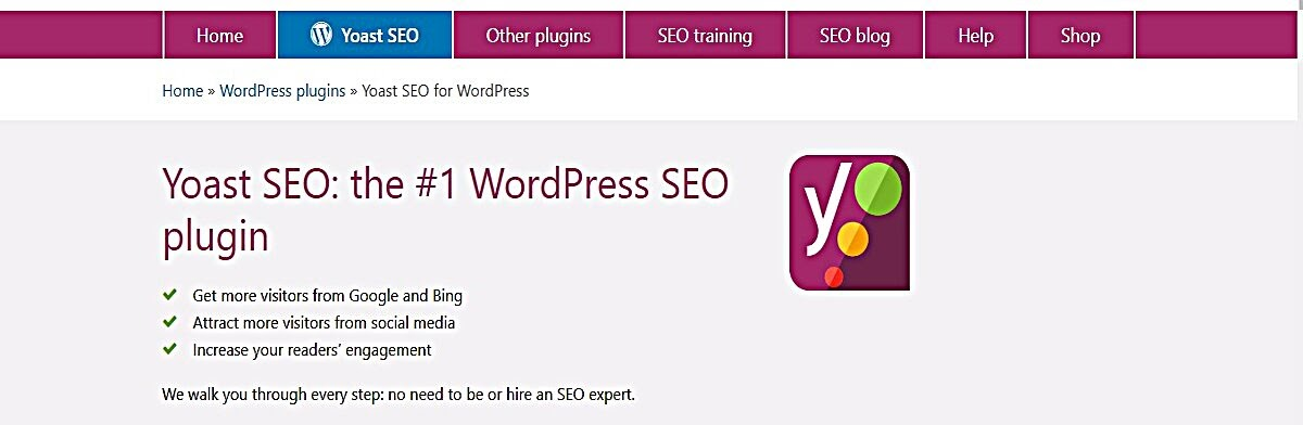 Screenshot showing details of the Yoast SEO WordPress plugin