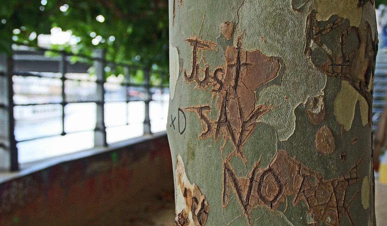 """a tree carving that says """"just say no,"""" to remind you that you have the final say as a writer"""
